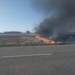 Рятувальники ліквідовують загорання чагарників поблизу Рівного
