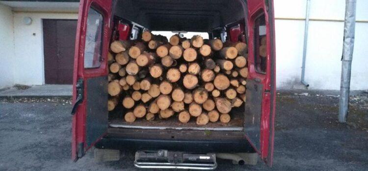 На Рівненщині затримали лісокрадіїв