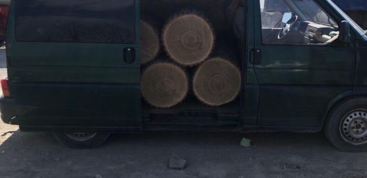 На Рівненщині лісівники затримали лісокрадів