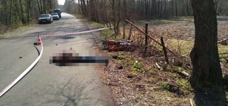 На Рівненщині смертельна ДТП: мотоцикліст зіткнувся з деревом