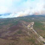 Пожежі у лісових масивах Рівненщини – ліквідували