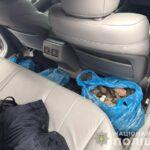 На Рівненщині поліцейські вилучили майже 23 кілограми бурштину-сирцю