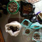 Поліцейські у Рівному та Березному вилучили понад 25 кілограмів бурштину
