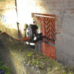 В Рівному під час пожежі врятували двох безхатченків