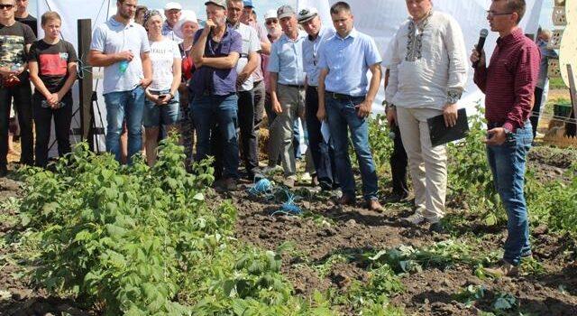 Екологічне землеробство: як органіка розвивається на Рівненщині