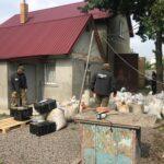 СБУ блокувала діяльність підпільного цеху з обробки бурштину