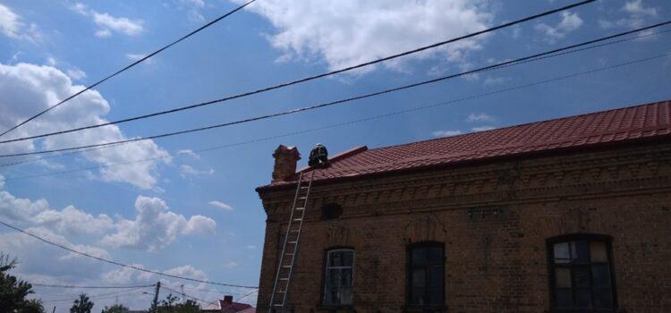 На Рівненщині рятувальники повернули до гнізда пташеня лелеки, що випало на землю