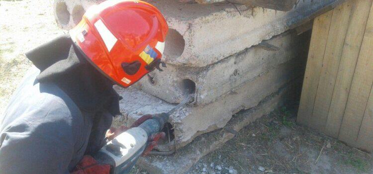 Рятувальники дістали із залізобетонної труби персидського кота