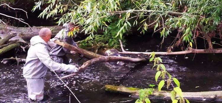 Поблизу Рівного у водоймі виявили тіло чоловіка