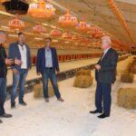 Для реалізації інвестиційного проекту у Гощу привезуть курчат з Угорщини