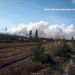 Рятувальники ліквідовують пожежі у природних екосистемах Рокитнівського та Зарічненського районів