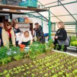 Рада старшокласників Рівненщини поділилася ідеями збереження довкілля