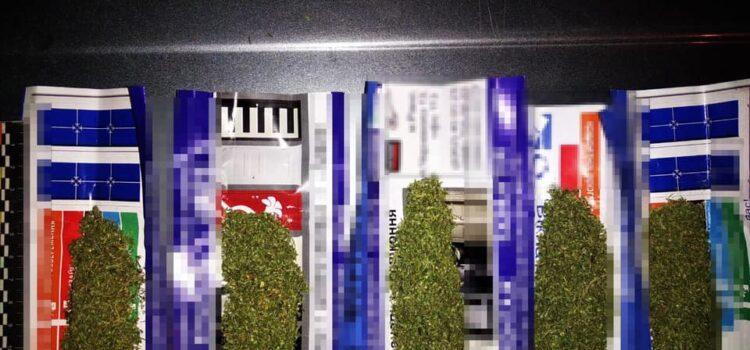 Патрульні у рівнян виявили марихуану
