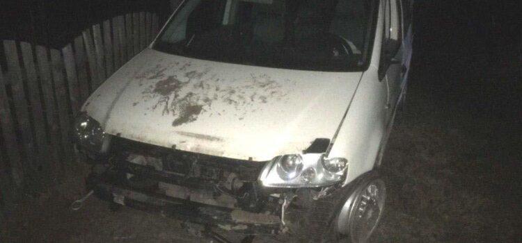На Рокитнівщині 20-річний водій фургону злетів у кювет і загинув
